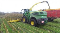 shredlage claas articles