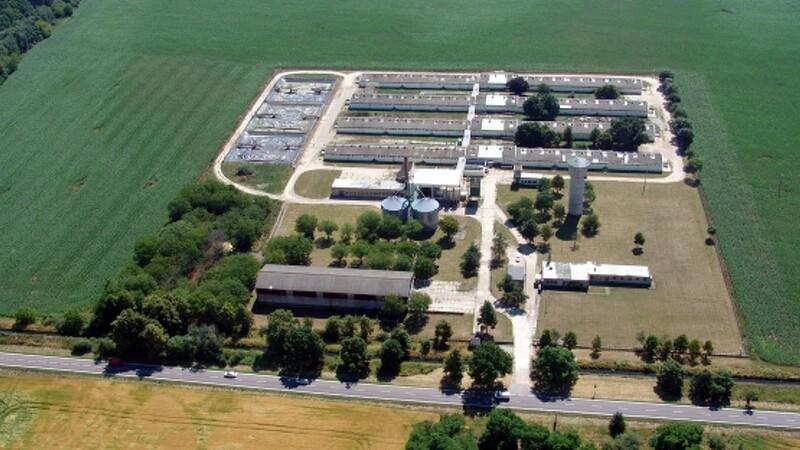 FirstFarms køber kæmpe svineproduktion