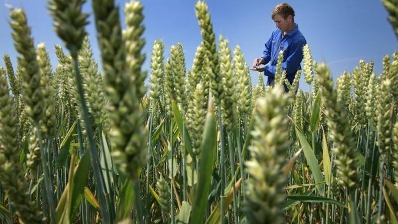 Ny landbrugslov skader generationsskiftet