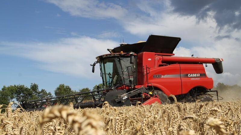 Hollandsk interesse i dansk landbrug