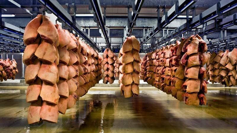 Slagteri kører på nedsat blus efter mistanke om svinepest