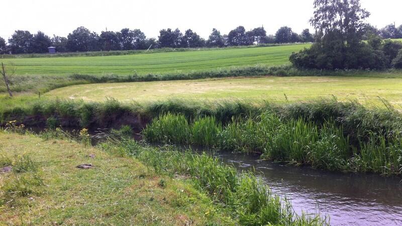 Ny vandløbslov som værn mod oversvømmede haver og våde marker