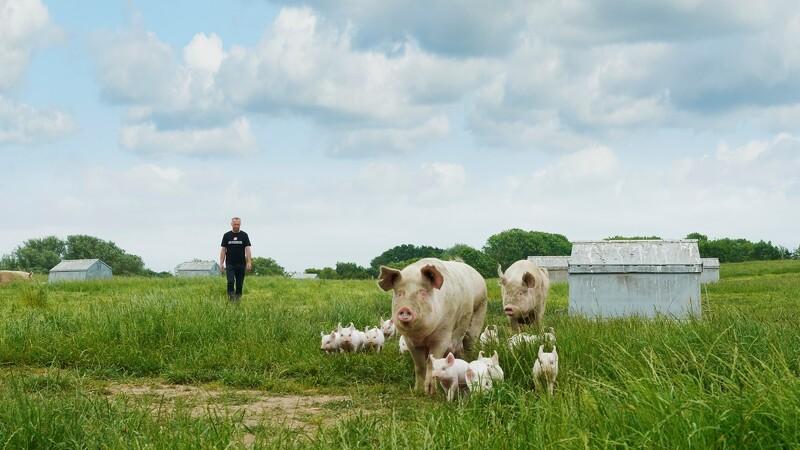 Friland hædret for 25 års indsats for dyrevelfærd