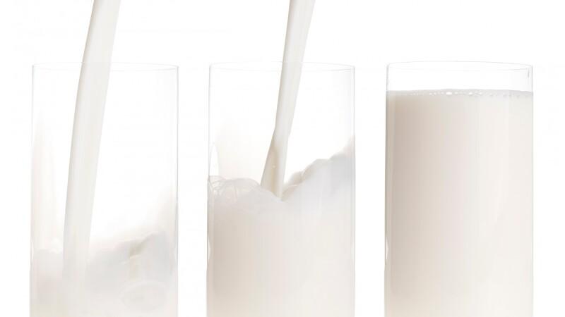 Mælkeauktion slutter i plus