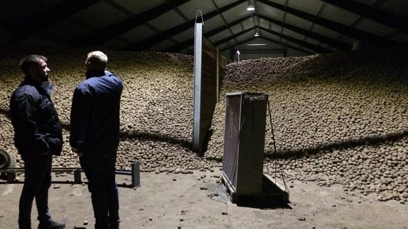 De heldige kartofler fik besøg af Landboungdom