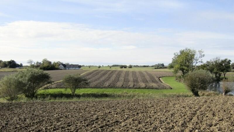 Landbrug i Skåne: Investering og drift