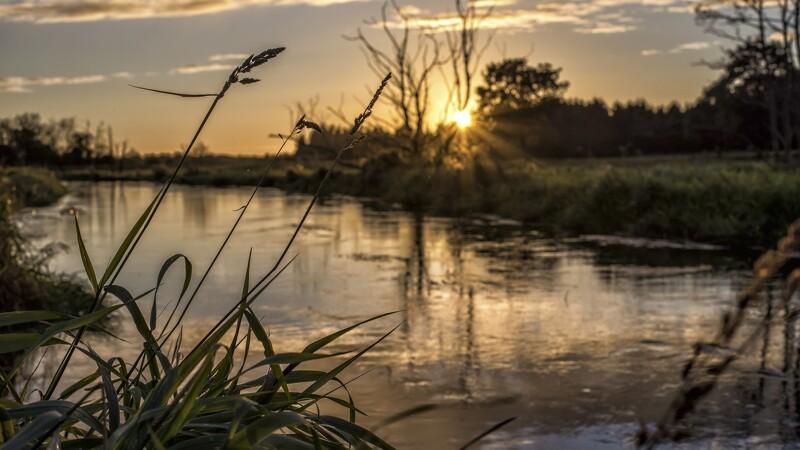 Miljøstyrelsen: Landbrugspakken kan bygge på forkert grundlag