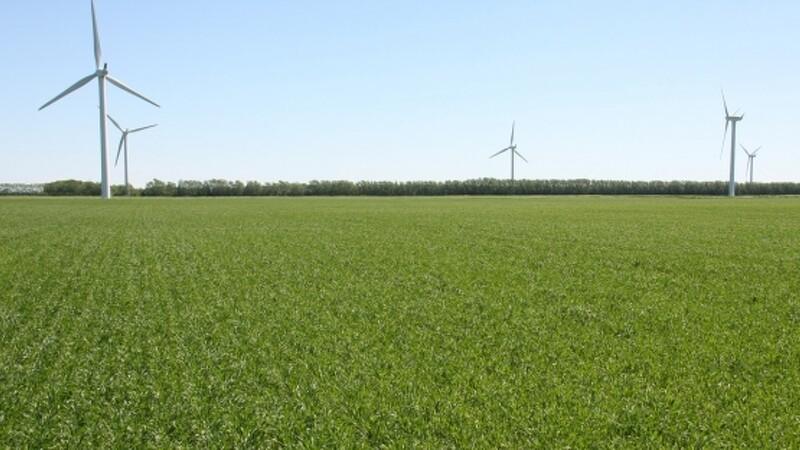 ØL: Økologer bruger naturens egne midler