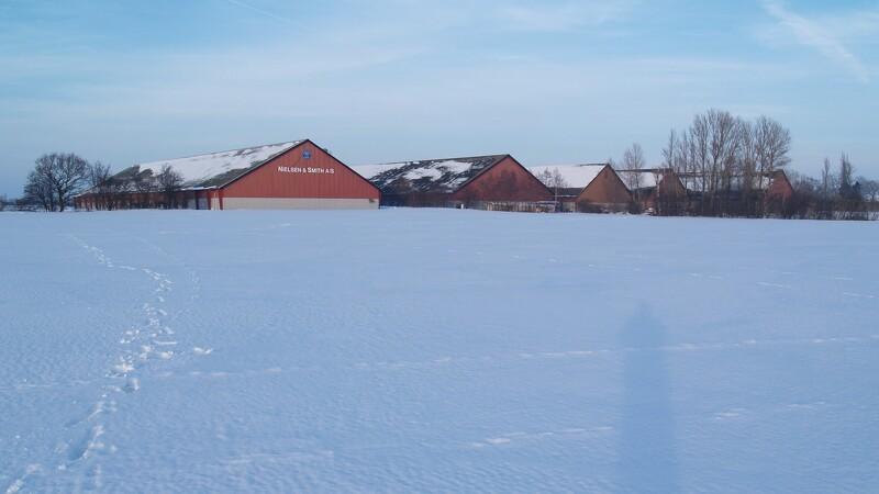 Rekordresultater venter nordjyske landmænd