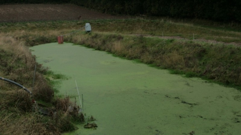 Regeringen: Minivådområder er en gevinst for landmænd, vandmiljø og hele erhvervet