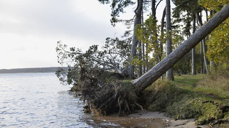 Folketinget vedtager ny stormflodslov