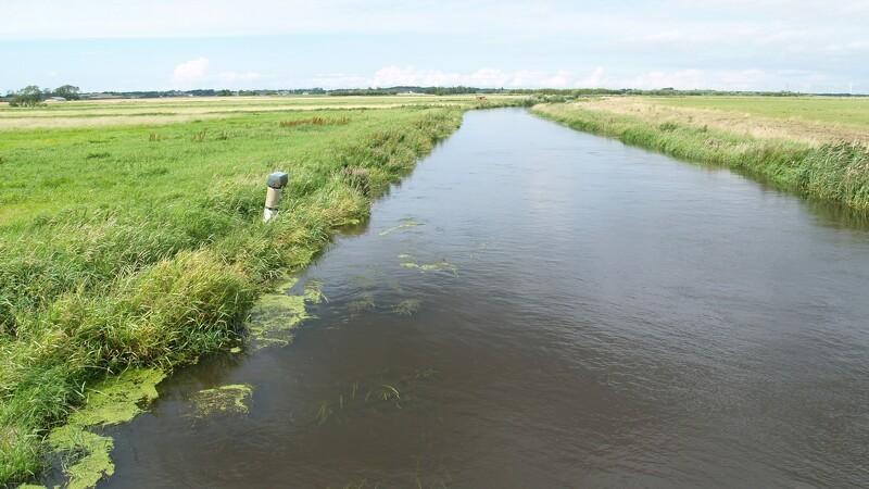 Drilske vandløb skal studeres nærmere