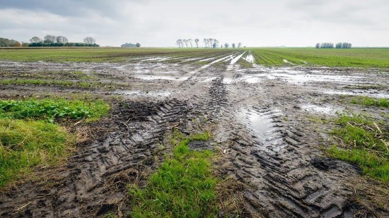 Landbrug: Effektiviser afvanding af marken med digitale drænkort
