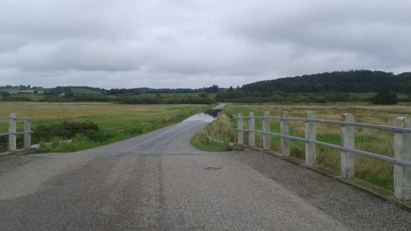Ålav raser: 4000 hektar ude af drift