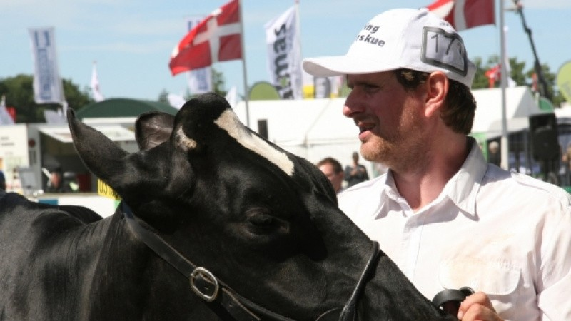 Tre generationer har udstillet Holstein-køer