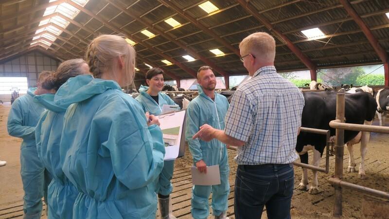 Dyrlæger og landmand mødes om køerne