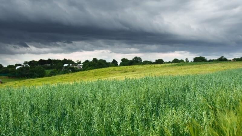 Fynsk landmænd frygter gasledning