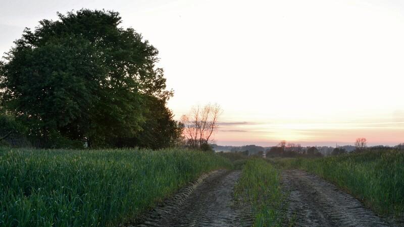 Landmænd kan lukke markvej ned med en mail