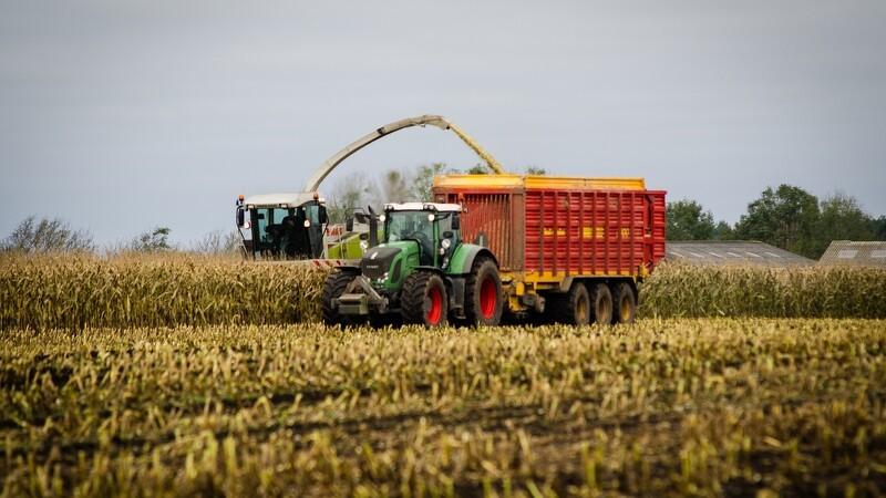 Landbrugsstyrelsen fyrer hver 20. medarbejder