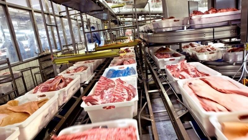 Svinepest-alarm på dansk slagteri afblæst
