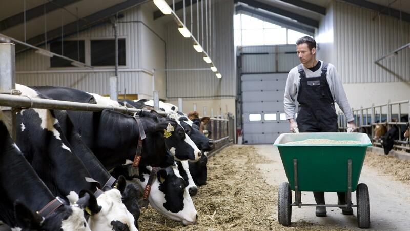 Landbrugslivet kræver et godt helbred