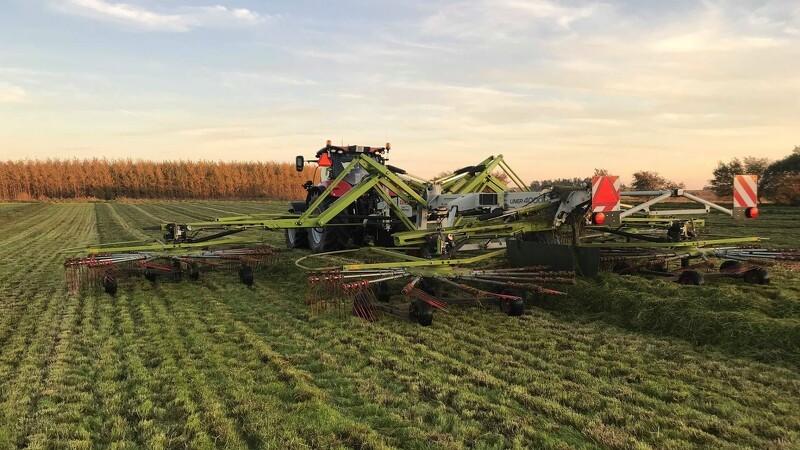 Ny rapport: Gevinster for miljø og landbrug ved mere græs