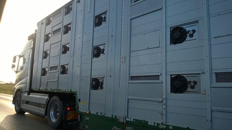 Kontrollen med dyretransporter skrues kraftigt op
