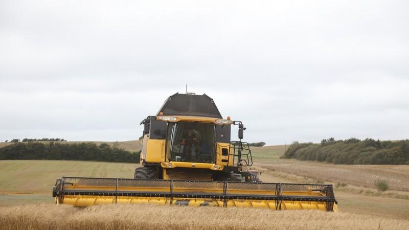 Jyske Markets: Optimismen er vendt tilbage til afgrødemarkedet