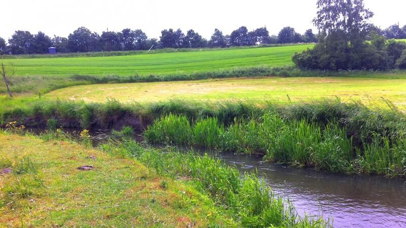 Ensilagesaft løb i åen