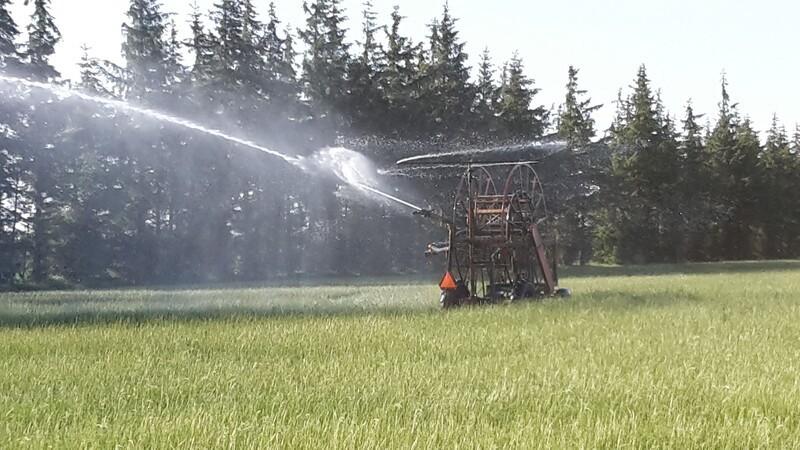 Sommeren 2019 bliver ikke en gentagelse af tørken i 2018
