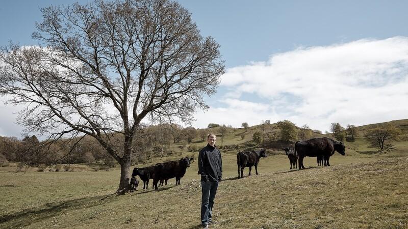 Tilskud til landmænd, der fremmer naturen