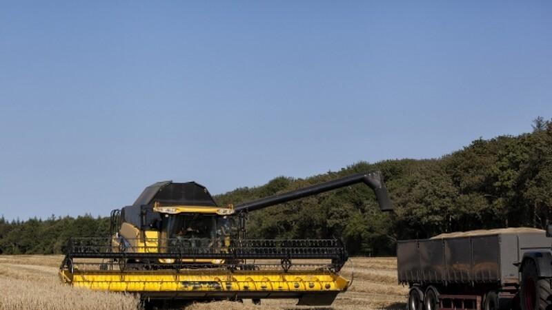 Kina stopper import af landbrugsvarer fra USA