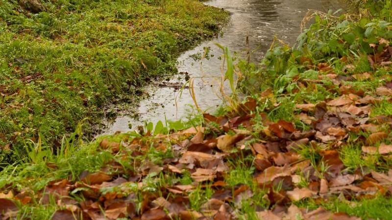 Danske Vandløb: Ansæt hydrologer til at arbejde med vandløb