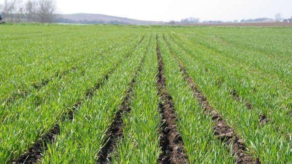 pris på landbrugsjord