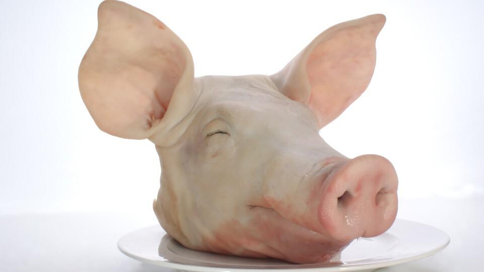 griseører
