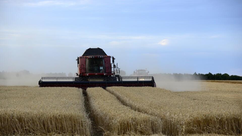 Landbrugs spil online dating