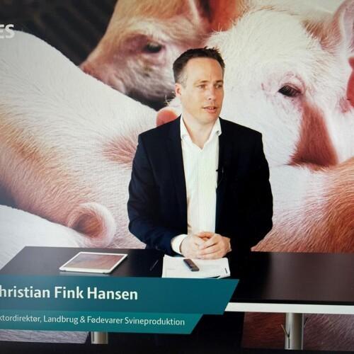 Positive og negative tendenser i dansk svineproduktion