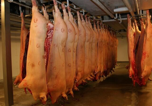 EU-hjælp til svinesektoren