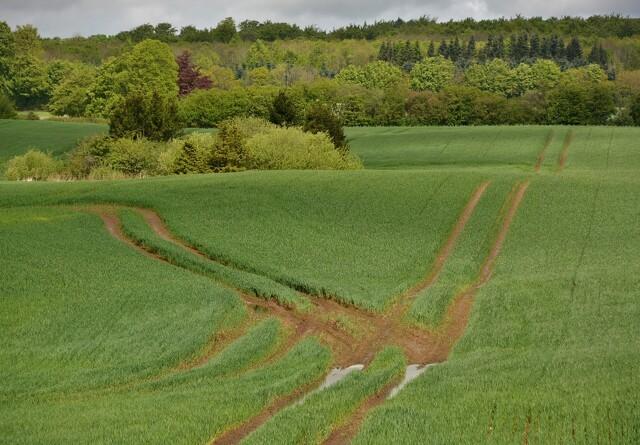 Nordjyske landmænd vil påvise unfair konkurrencevilkår