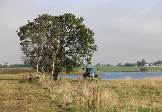 Velas: Indsatsen i vandmiljøet skal målrettes lokale forhold