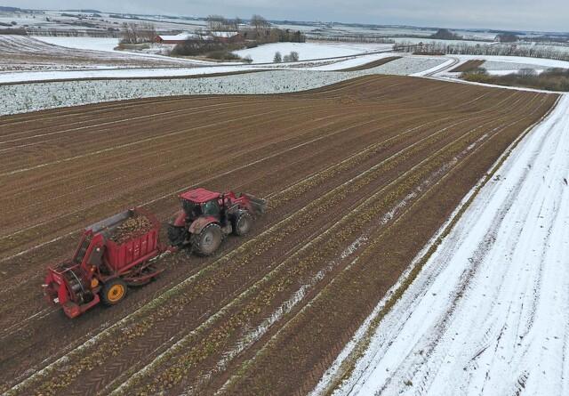 Jyske Markets: Snestorm skaber frygt for afgrøderne i Texas