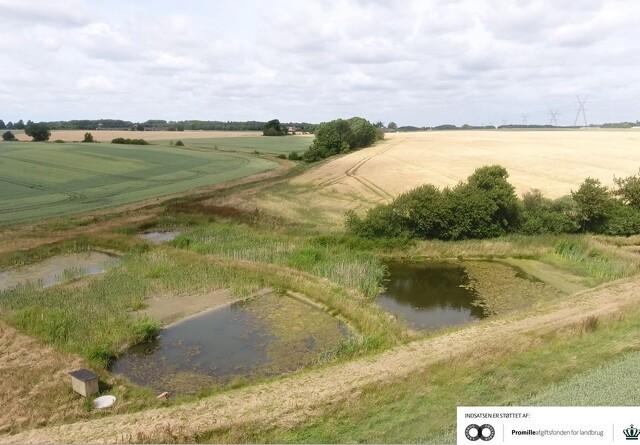 Nordjyske landmænd vil naturen og miljøet