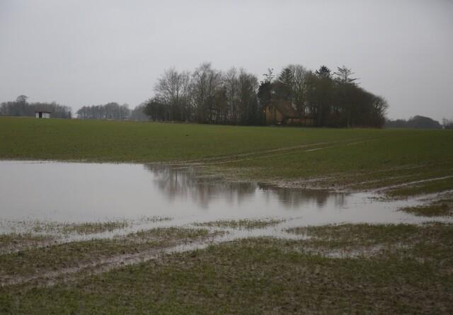 For få landmænd er forsikret mod afgrødetab
