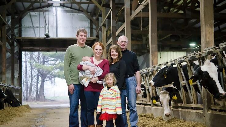 Integreret ostemejeri på mælkefarm