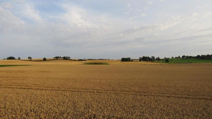 Landbrug i Skåne: Sverige vs. Danmark
