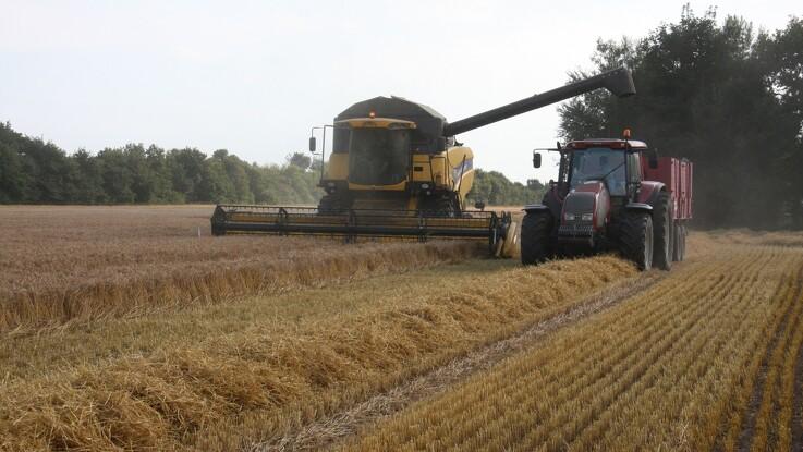 Høstfrist kan udsættes