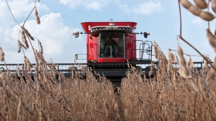 Kina vil igen købe soja i USA