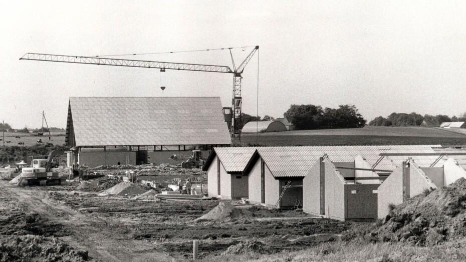 Bøgildgård 1981